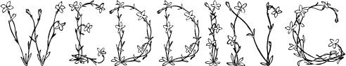 Fleurs de Liane