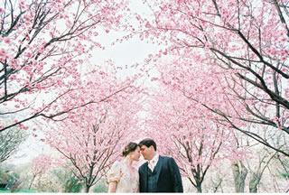 桜を使った海外ウエディングフォト20
