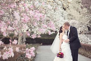 桜を使った海外ウエディングフォト5