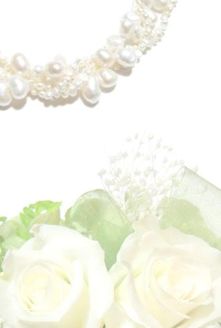 写真なし結婚報告ハガキ素材|背景素材67