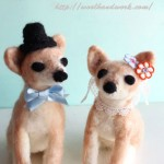 wedding-doll-chihuahua1